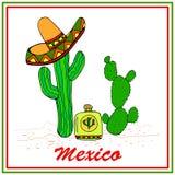 Grappige cactussen in sombrero met tequila Kleurrijke modieus elemen stock illustratie