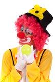 Grappige clown Stock Foto