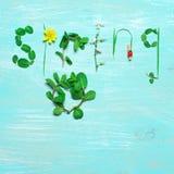 Grappige de lenteachtergrond Stock Afbeelding