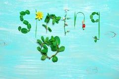 Grappige de lenteachtergrond Stock Foto's