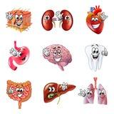 Grappige de pictogrammen vectorreeks van beeldverhaal menselijke organen Royalty-vrije Stock Foto's