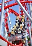 Grappige dierlijke achtbaan Royalty-vrije Stock Afbeelding