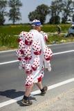 Grappige Disguisesd-Toeschouwer royalty-vrije stock afbeelding
