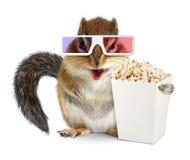Grappige eekhoorn met lege geïsoleerde popcornemmer en 3d glazen Stock Foto