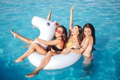 Grappige en schitterende jonge vrouw die in pool zwemmen Zij spelen met witte vlotter Twee modellen zijn daar Derde men is eracht stock afbeelding