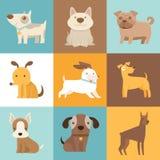 Grappige en vriendschappelijke honden en puppy Stock Afbeelding