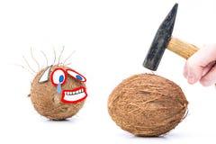 Grappige foto van een kokosnoot op witte achtergrond Grappig concept gevaar en vrees stock foto