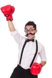 Grappige geïsoleerde bokser Royalty-vrije Stock Foto's