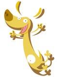Grappige gekke hond Stock Foto's