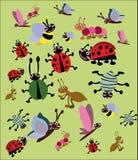 Grappige geplaatste insecten Royalty-vrije Illustratie