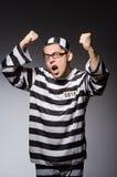 Grappige gevangene op grijs stock foto
