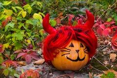 Grappige Halloween-pompoenkat in de tuin Stock Foto