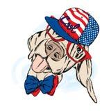 Grappige hond die een GLB en zonnebril dragen Vector illustratie Koele hond Royalty-vrije Stock Afbeelding