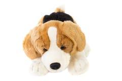 Grappige hond. Stuk speelgoed Royalty-vrije Stock Afbeelding
