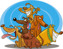 Grappige honden Royalty-vrije Stock Afbeeldingen