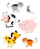 Grappige huisdieren Stock Afbeelding