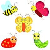Grappige insecten Stock Foto's