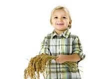 Grappige jongen met rijstinstallaties in de handen Stock Afbeelding