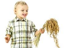 Grappige jongen met rijstinstallaties in de handen Royalty-vrije Stock Afbeeldingen