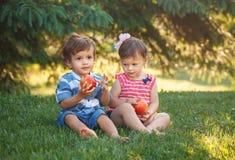 Grappige kinderenpeuters die samen het delen van appelvoedsel zitten stock fotografie