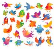 Grappige kleurrijke vogeltjes Stock Afbeeldingen