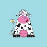 Grappige koe. Stock Afbeeldingen