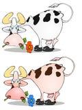 Grappige koe met bloem in mond royalty-vrije stock foto's