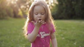 Grappige langharig meisjes blazende bloemblaadjes van bloem van hand stock footage