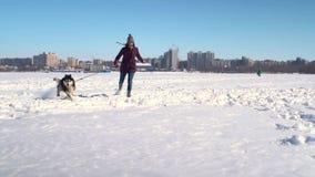 Grappige langzame motie van Schor hond en jonge vrouw die hoge sneeuw naar camera doornemen stock videobeelden