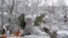 Grappige mees het pikken zaden dichtbij de sneeuwman stock footage