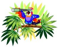 Grappige papegaai met telescoop op palm Stock Afbeeldingen