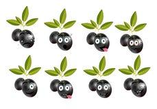 Grappige reeks, inzameling van geïsoleerde, zwarte olijven Royalty-vrije Stock Afbeelding