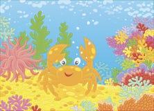 Grappige rode krab onder koralen Royalty-vrije Stock Fotografie