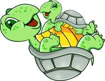 Grappige schildpad Stock Afbeelding