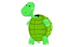 Grappige Schildpad stock illustratie