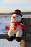 Grappige stuk speelgoed sneeuwman Stock Fotografie