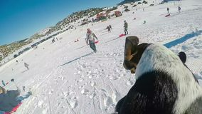 Grappige video van een hond en een mens die sneeuwslee doen en weg aan de sneeuw vallen Ontbreek in super langzame motie stock videobeelden
