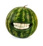 Grappige watermeloen Stock Fotografie