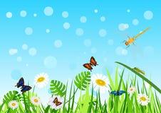 Grappige zonnige de zomerweide met insecten royalty-vrije illustratie