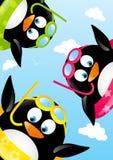 Grappige zwemmende pinguïnen Royalty-vrije Stock Afbeeldingen