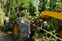 Grapple Skidder on Logging Site Stock Images