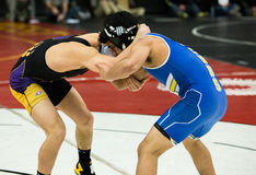 Grapplers At the Championships Stock Photography