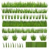 Gras über Weiß Stockfotos