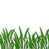 Gras [01] Stock Fotografie