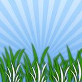 Gras [02] Royalty-vrije Stock Foto's