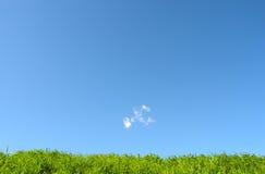 Gras - Aarde - gras met blauwe hemel Stock Afbeelding