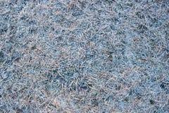 Gras als achtergrond die met sneeuw wordt behandeld Royalty-vrije Stock Afbeelding