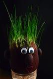 Gras auf dem Kopf stockbilder