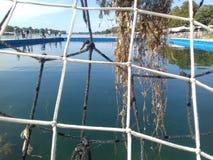 Gras auf dem leeren Wasserballziel Lizenzfreie Stockfotografie