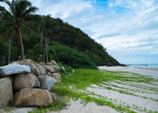 Gras auf dem Strand Lizenzfreies Stockfoto